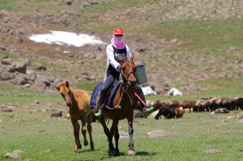 Berivan ve çobanların 3 bin rakımlı yaylada 180 günlük zorlu mesaisi