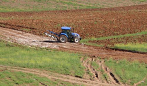 Çiftçi yağmur bekliyor