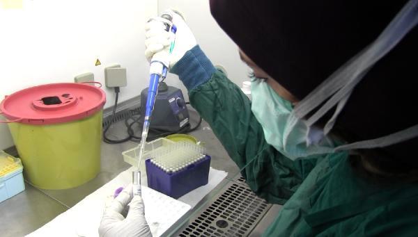 Çin aşısı, Diyarbakır'da çarşamba günü gönüllülere uygulanacak