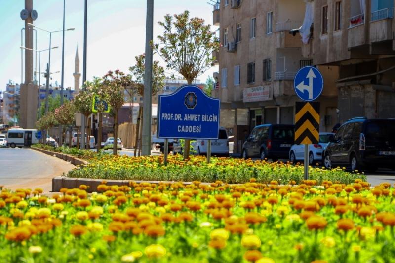 Diyarbakır dikilen çiçek ve ağaçlarla rengarenk
