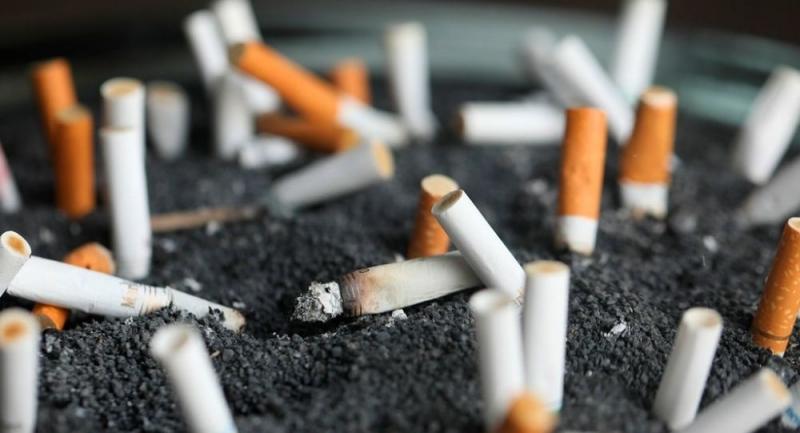 DSÖ: Tütünle mücadelede Türkiye dünya birincisi