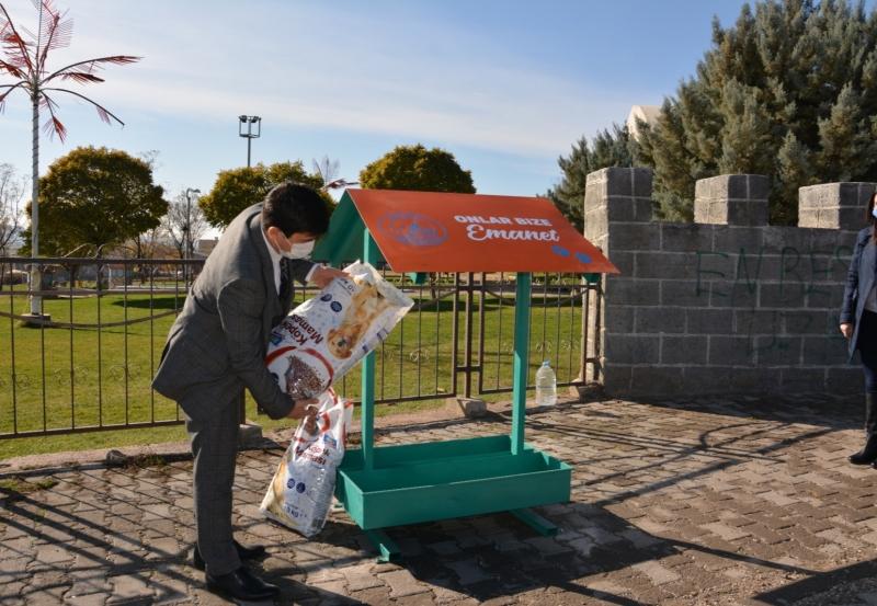 Ergani Belediyesi'nden Sokak Hayvanları İçin Mama ve Su Kabı Desteği