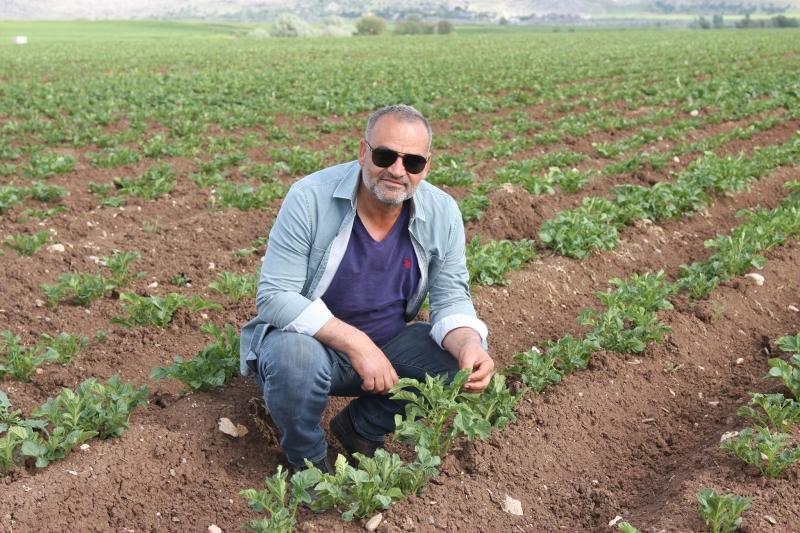 Ergani Toprağının Patates Sınavı