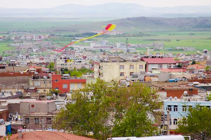 Ergani'de bu renkli kareler ortaya çıktı.