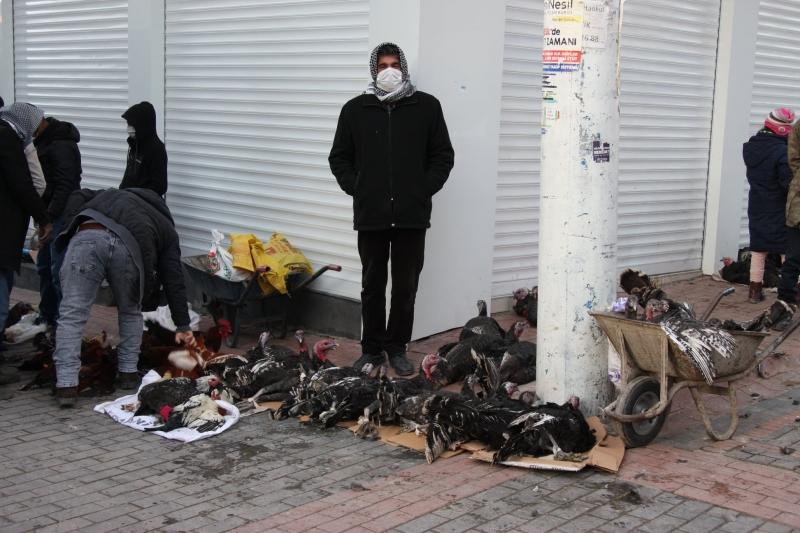 Ergani'de yılbaşı hindileri satışa sunuldu