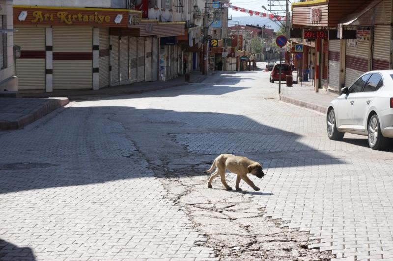 Ergani'nin Cadde ve sokaklarında sessizlik hakim
