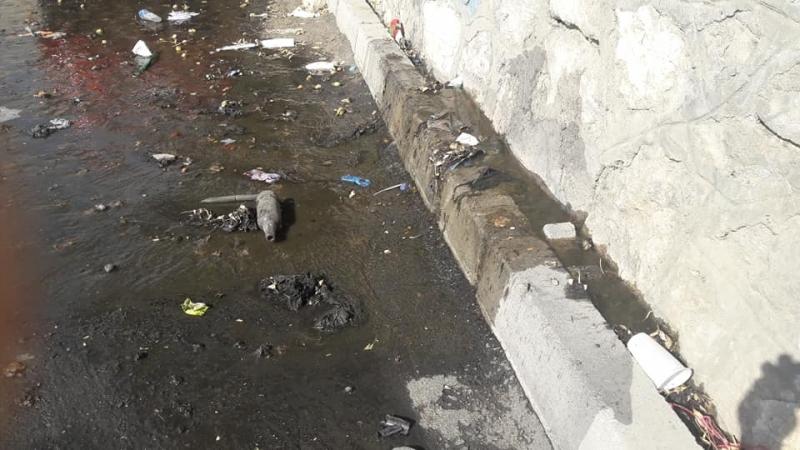 Kemaliye Mahallesinde caddeyi lağım suları bastı!