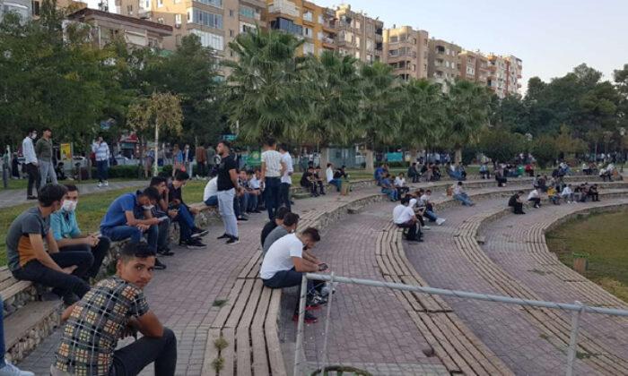'Kürtçe kullanımının azalması Kürt gençleri üzüyor'
