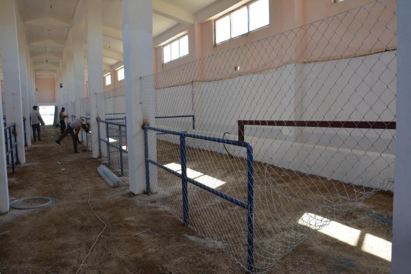 Sokak hayvanları için rehabilitasyon merkezi