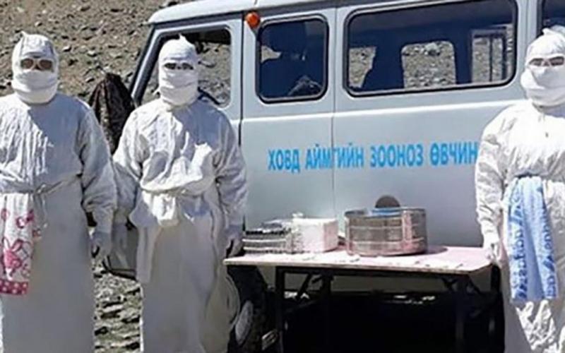 Yine Çin yine yeni bir salgın! Korona bitmeden 'bubonik veba' salgını 24 saatte öldürüyor