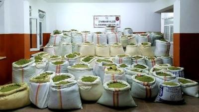 1 ton 756 kilo esrar, 90 bin kök kenevir ele geçirildi