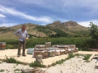 Bal üreticileri kovan bakımı yapıyor