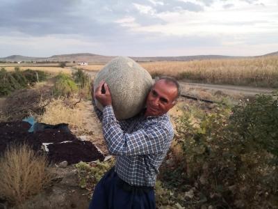 Ergani ilçesinde 27 kilogram kavun yetiştirdi